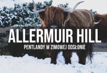 Pentlandy – Allermuir Hill, szkockie krowy i wieś Swanston