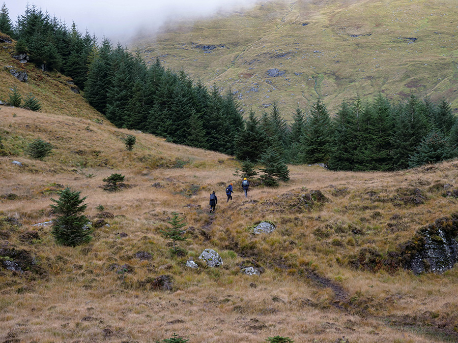 jesień w szkockich górach