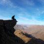 Beinn an Lochain – nasz pierwszy szkocki szczyt