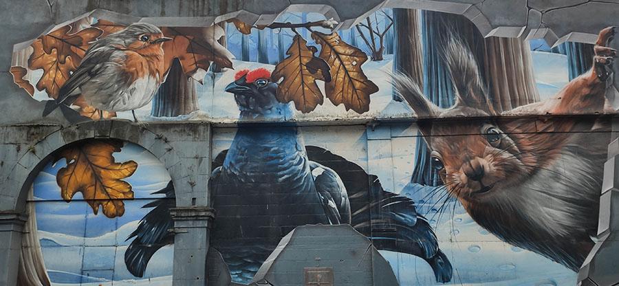 Fellow Glasgow Residents strret art w Glasgow