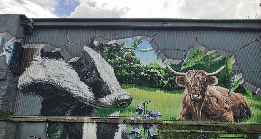 Fellow Glasgow Residents street art w Glasgow