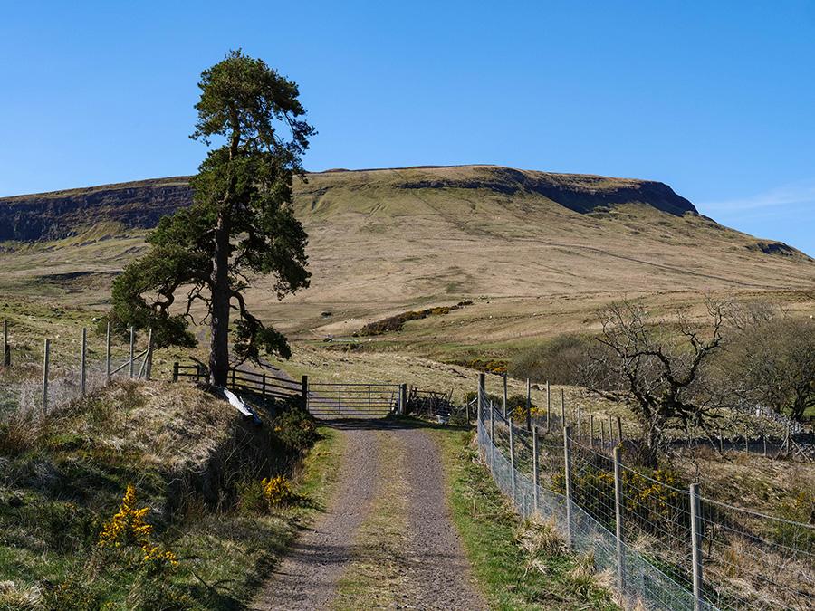 Wzgórza Fintry i Gargunnock - mało znane góry w Szkocji