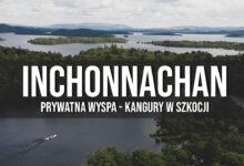 Inchconnachan – prywatna wyspa, kangury w Szkocji?