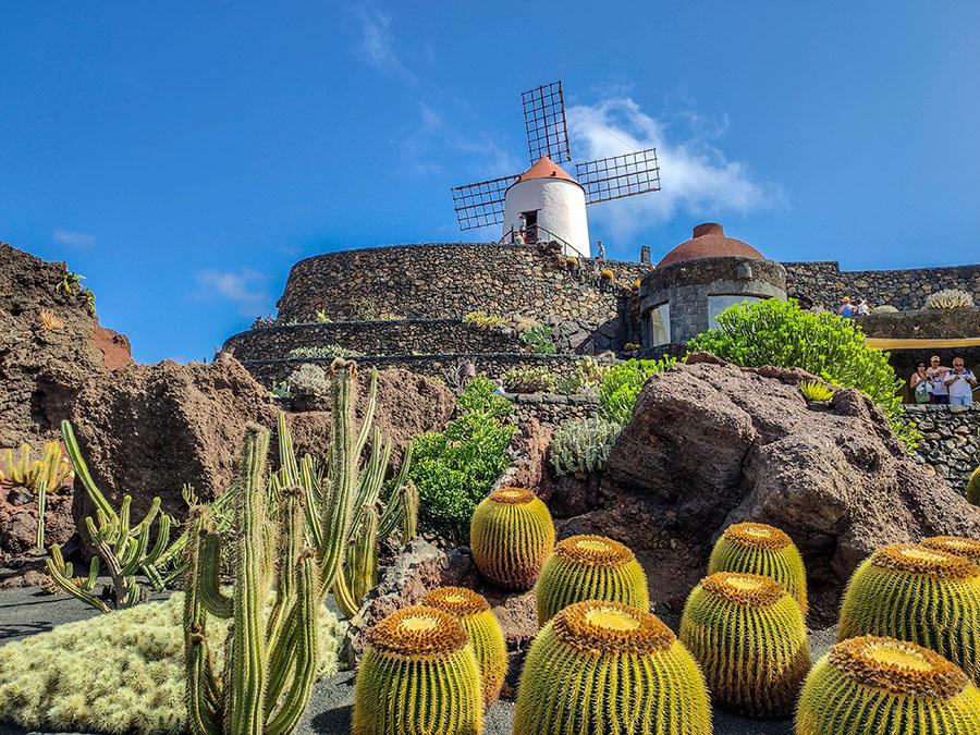 jardin de cactus ogród kaktusów lanzarote