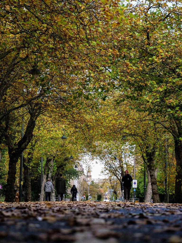 kelvingrove park parki w glasgow