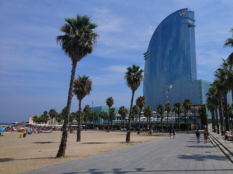 plaża la barceloneta barcelona