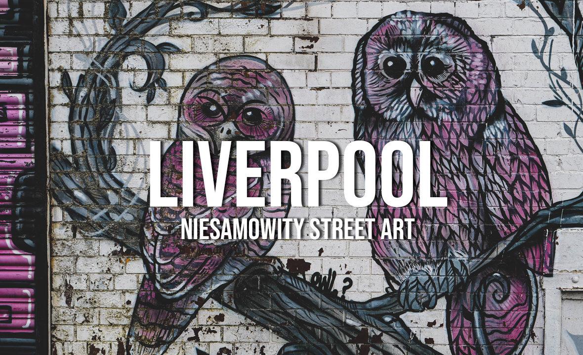 liverpool niesamowity street art murale