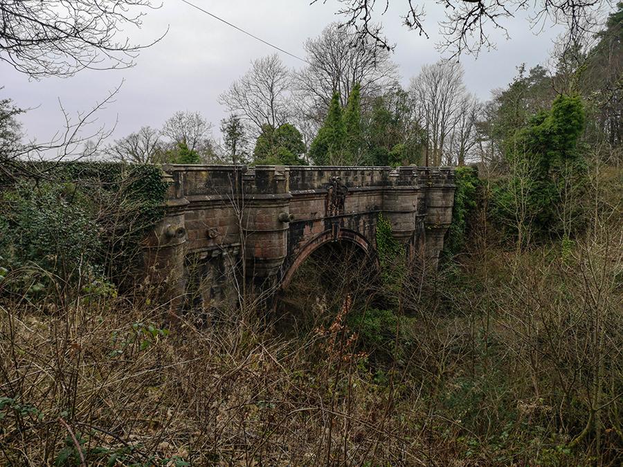 Most psich samobójców