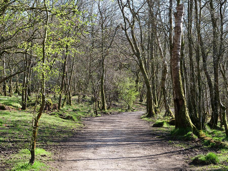 Mugdock Country Park i Castle, co zobaczyć w Glasgow?