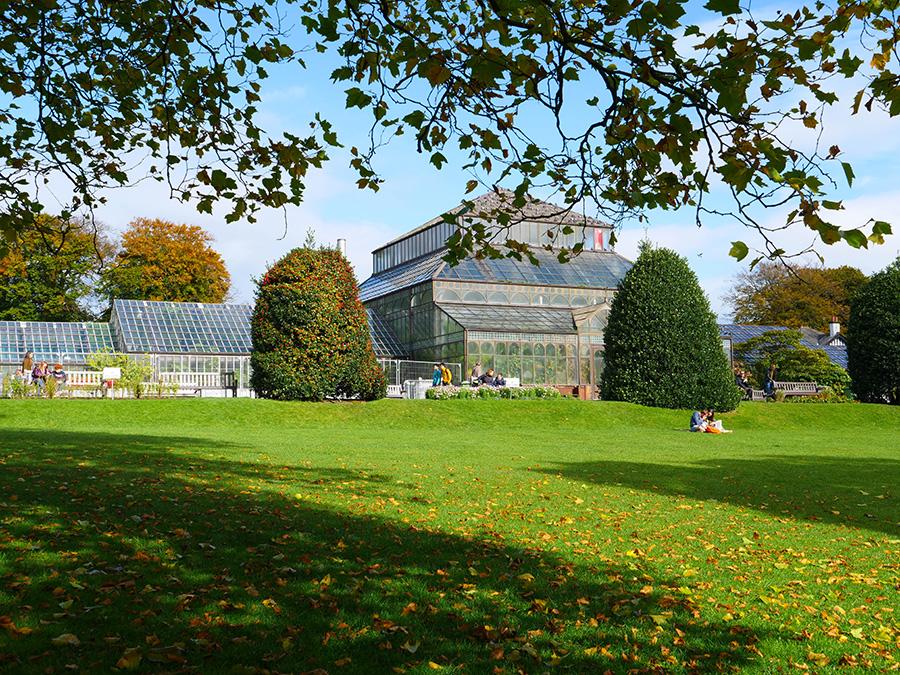 Ogród Botaniczny w Glasgow parki w Glasgow