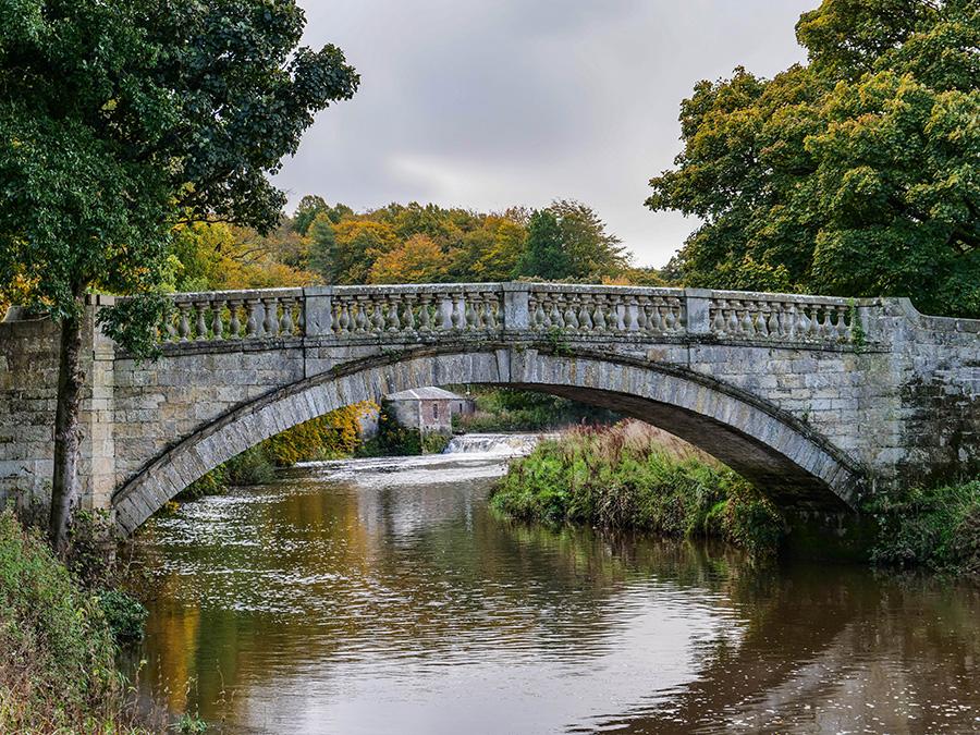 Pollok Country Park - najpiękniejszy park w Glasgow