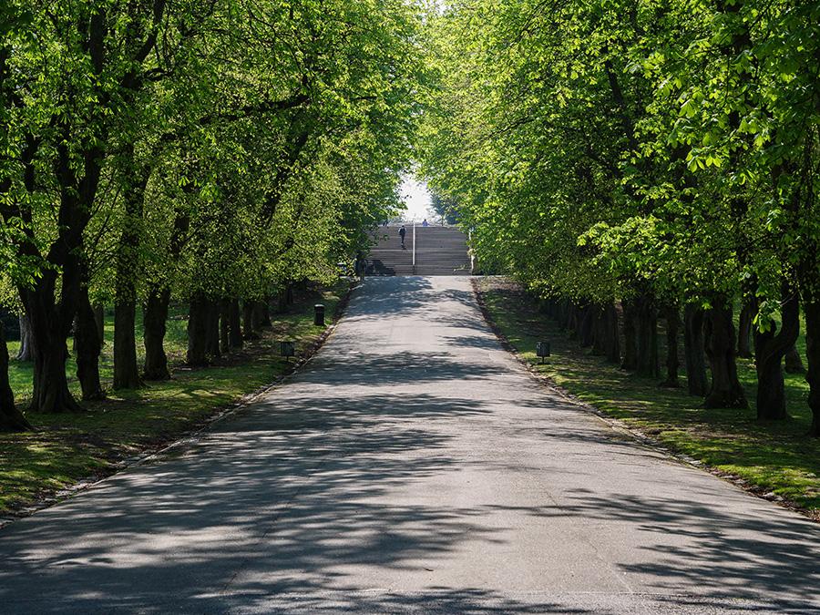 Queen's Park - najpiękniejszy park w Glasgow Outlander