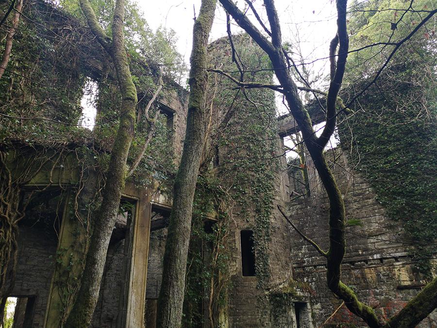 ruiny zamku buchanan castle szkocja