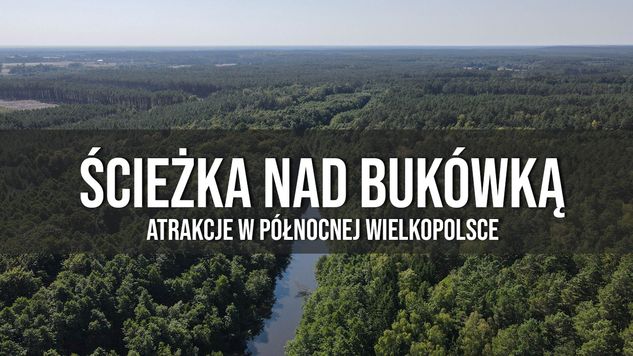 Ścieżka nad Bukówką atrakcje w wielkopolsce