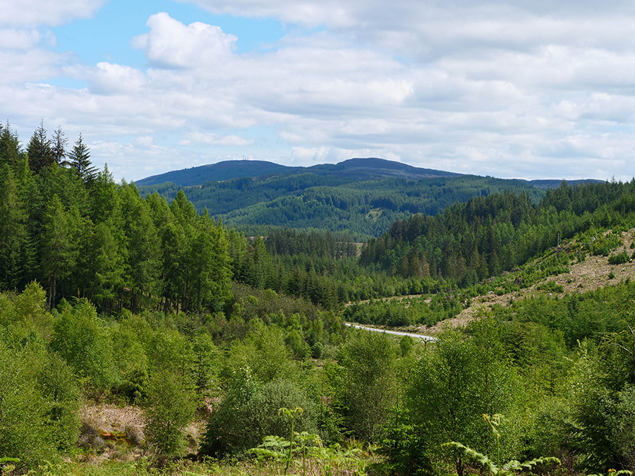 Three Lochs Forest Drive - ukryte perełki w Szkocji