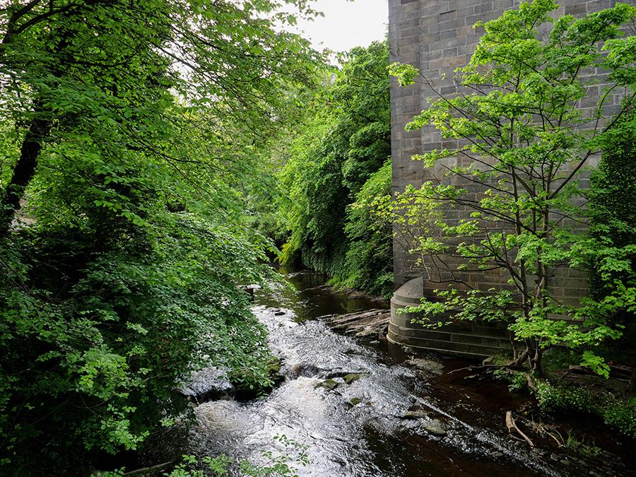 Spacer wzdłuż Water of Leith Edynburg